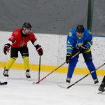 Семейная хоккейная группа